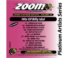 Zoom Karaoke Platinum Artists: Billy Idol (CD+G)