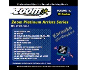 Zoom Karaoke Platinum Artists: U2 (CD+G)