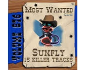 SUNFLY MOST WANTED 876 (CD+G)