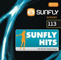 Sunfly Hits 113 (DVD)