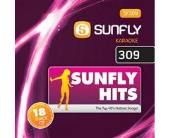 SUNFLY HITS 309 (CD+G)